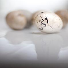 Eggs 2005.jpg