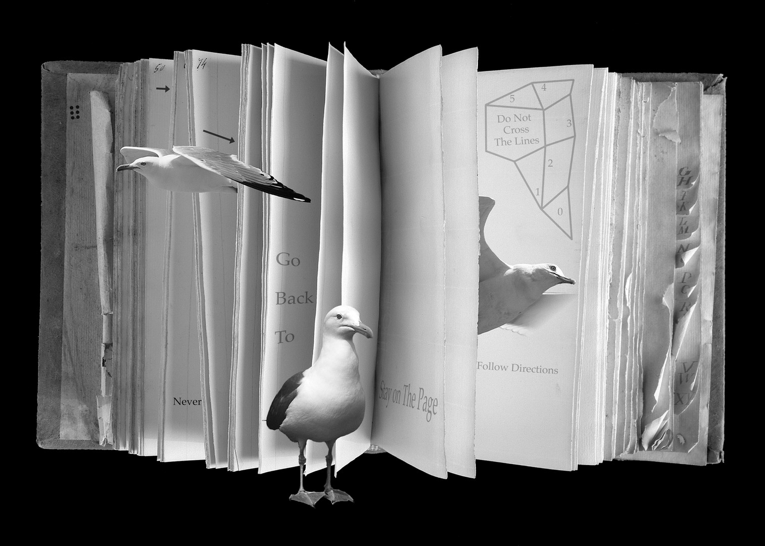 Book of Broken Rules 1994.jpg
