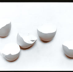 Eggshells 1977.jpg