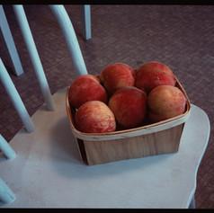 Peaches, Nantucket 1992.jpg