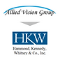 Allied Vision Group.png
