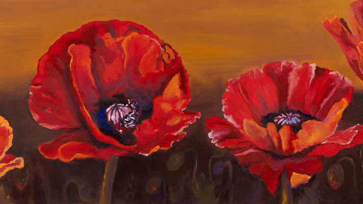 Four Poppies by Jill Lawson