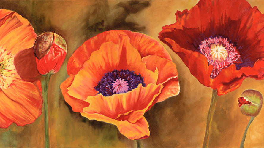 Three Poppies by Jill Lawson