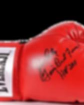 JCshopD2_signedGloves.png
