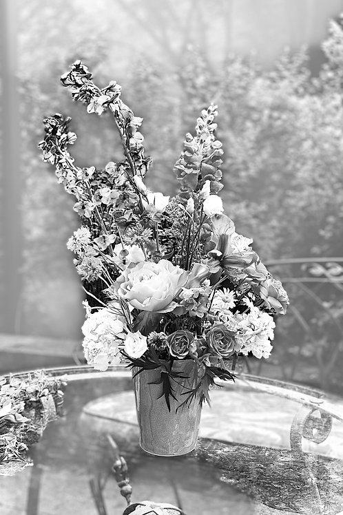 Pretty tall blooms