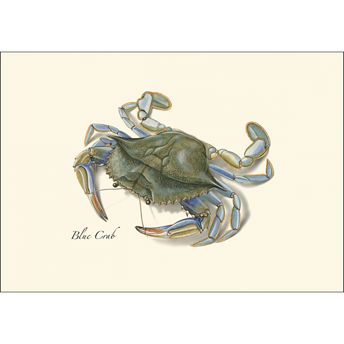 Blue Crab Boxed Note Cards 8-pack