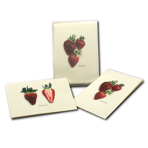 Strawberries Boxed Note Cards 8-pack