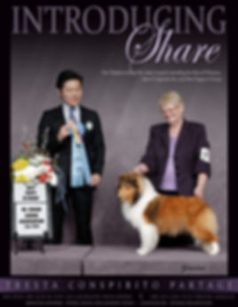 Roadhouse_(Share Sheltie)  02-28-2018.jp