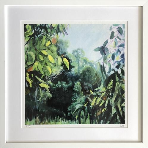 Garden of Eden II Framed Print
