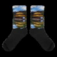 Kyoto Socks