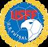 US Futsal.png