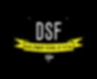 development School of Futsal Logo