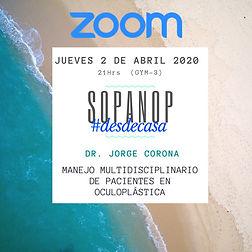 zoom corona.jpeg