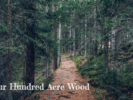 Our Hundred Acre Wood - By Pastor Thomas Engel