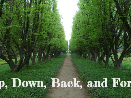Up, Down, Back, and Forth - By Pastor Thomas Engel