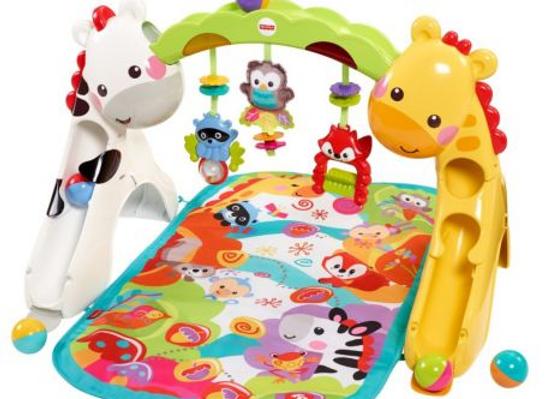 Ginásio de atividades Playground - Fisher Price