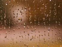 Good Rainy Morning
