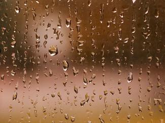 Rain, glorious rain.