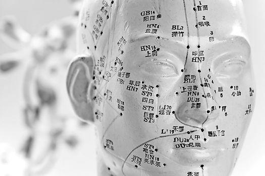 Acupuncture Model.jpg