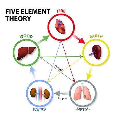 Five Zang-organs.jpg