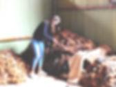 Alpakawolle Qualitätskontrolle