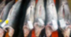 swordfish-whole.jpg