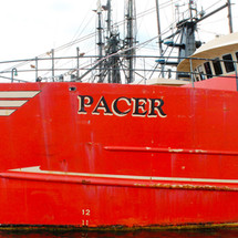 F/V Pacer