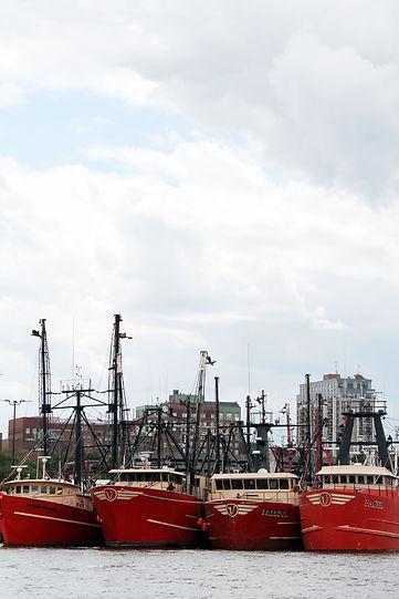 boats-pier-3-vertical.jpg