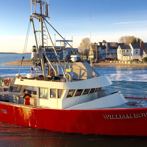 F/V William Bowe