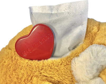 Kitty pouch with heart.jpg