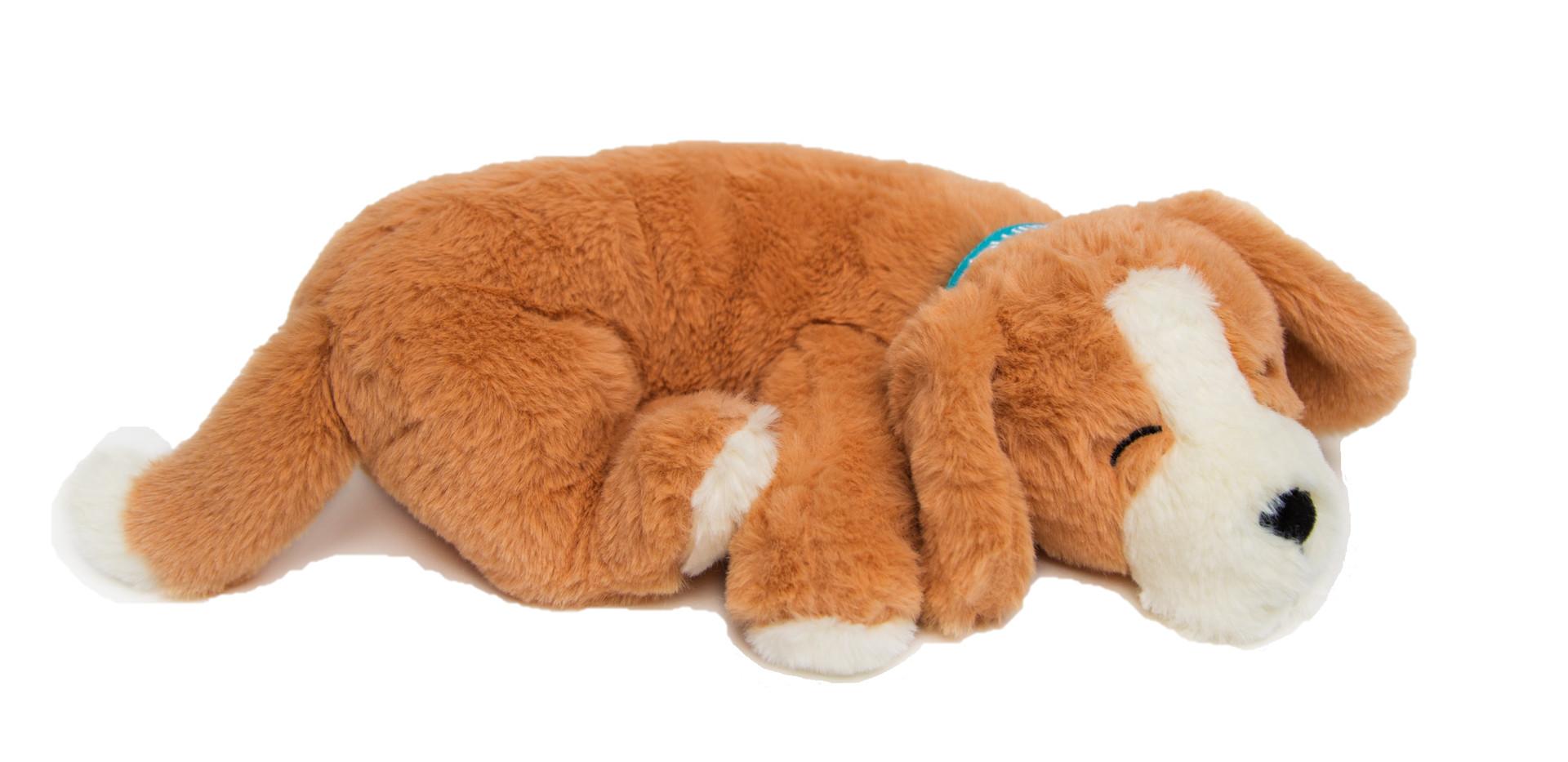 Calmeroos Puppy