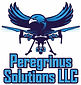 Peregrinus Solutions LLC Logo 1-8-2019.j