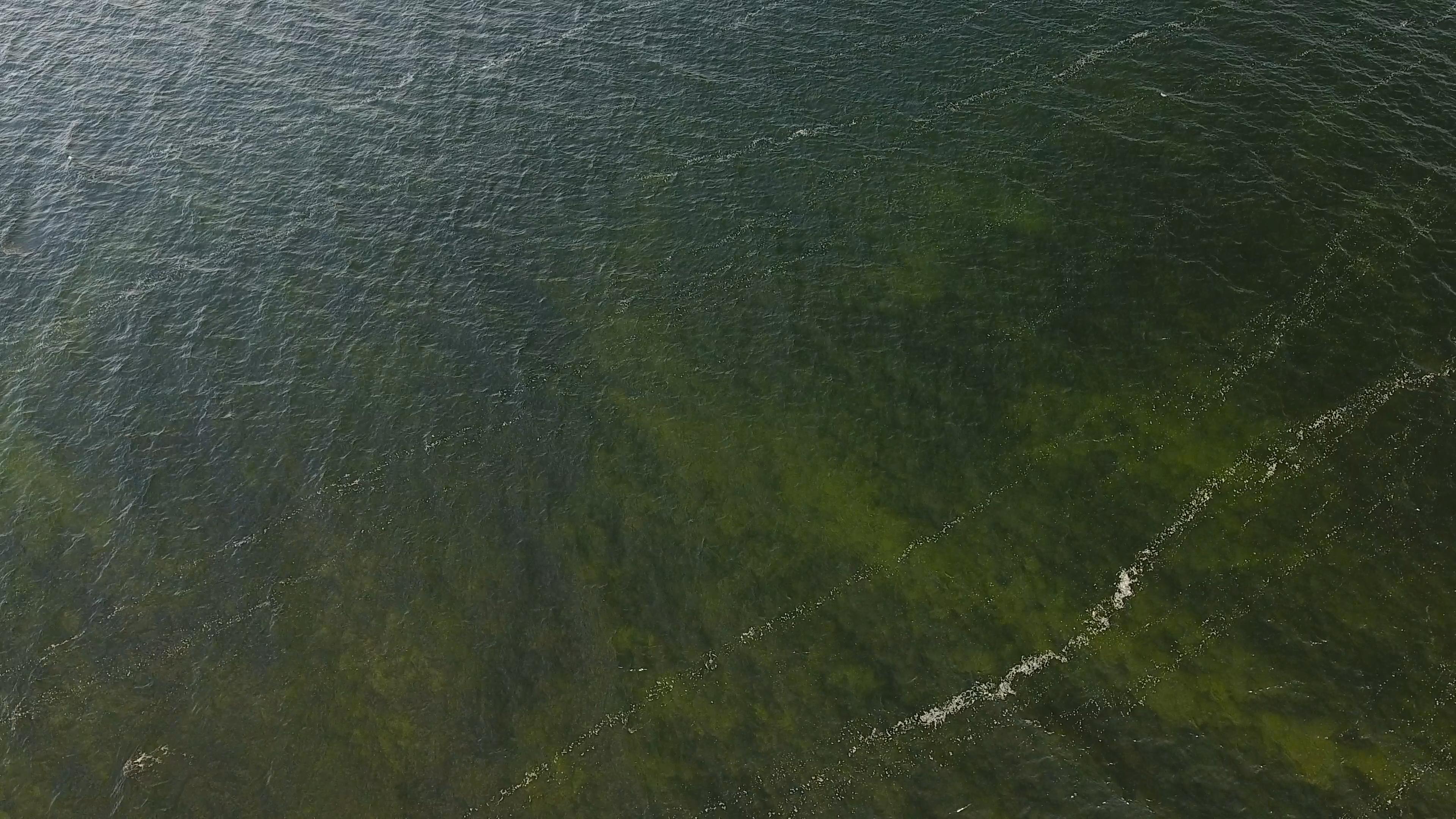 onieda lake waves 10-20-18