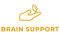 brain support icon.png