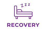 Recovery icon.png
