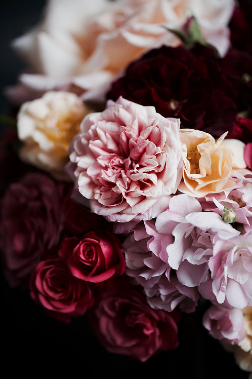Photographic Print {spring garden (i)}
