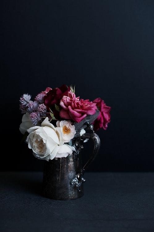 Photographic Print {spring garden (iv)}