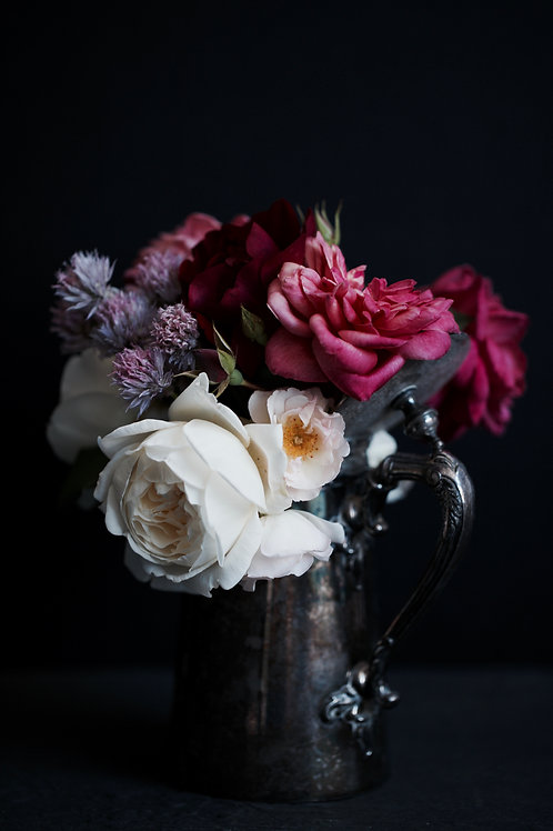 Photographic Print {spring garden (v)}