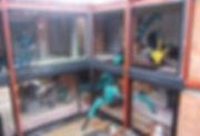 La mini grue est un matériel pas cher pour un chantier dans une cour intérieur