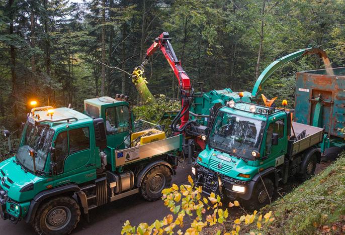 Unimog entretien forêt