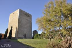 Castillo de Lorca (6)