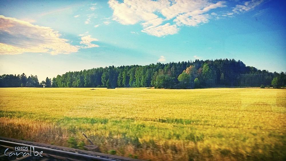 Suecia 2018 Tren Arboga (3) (Copiar)_edi
