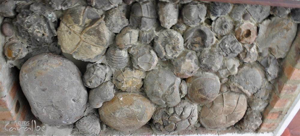 Museo El Fosil, Villa de Leyva (24)-001