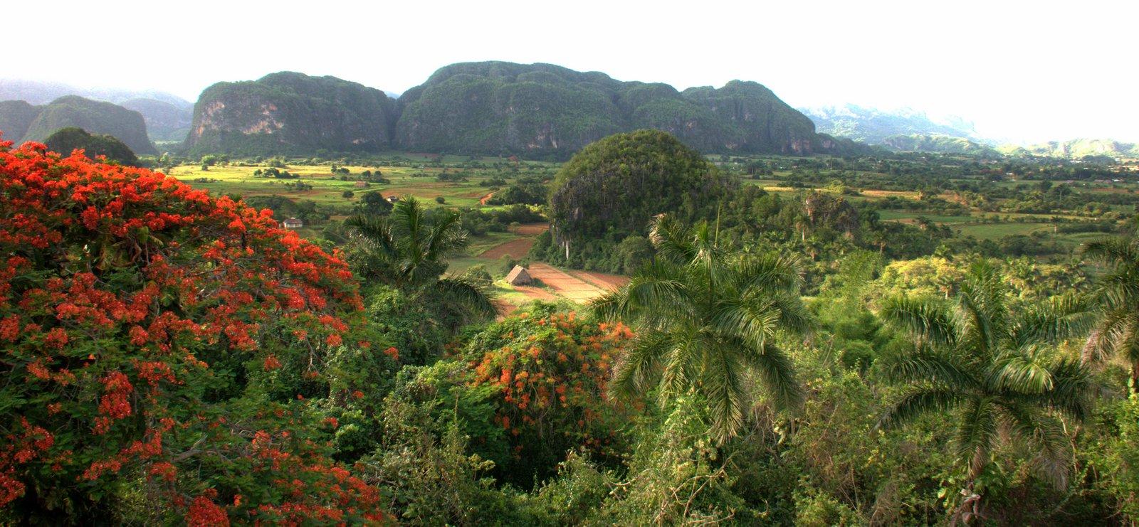 Pinar del Rio