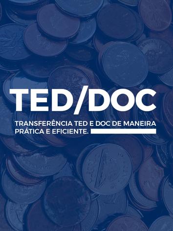 teddoc.png