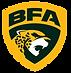 Liga_BFA_2020_Vers%C3%83%C2%A3o_Principa