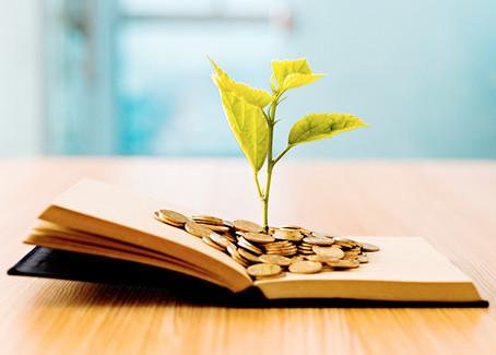 ¿Por qué no se recomiendan libros de Educación Financiera en el Sistema Educativo?
