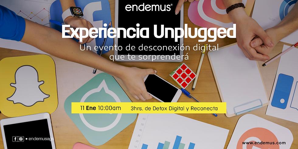 Experiencia Unplugged
