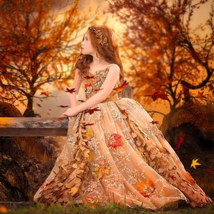 Dress Catalog Image
