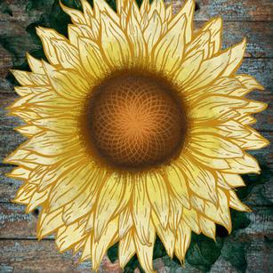 Sunflower poster office Decor